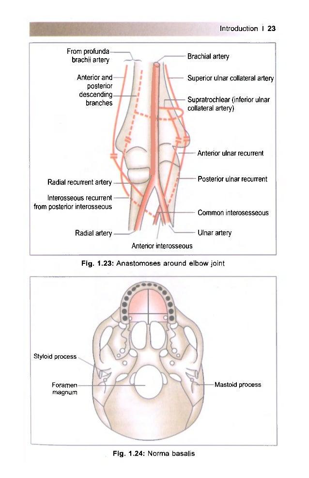 B d chaurasia\'s handbook of general anatomy (4th ed)
