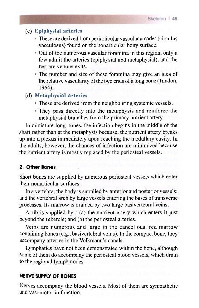 Regional anatomy definition