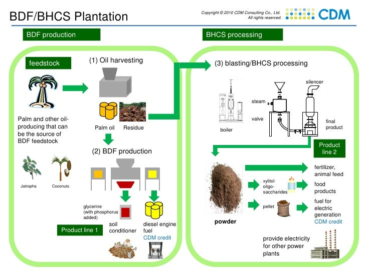 Copyright © 2010 CDM Consulting Co., Ltd. BDF/BHCS Plantation                                                             ...