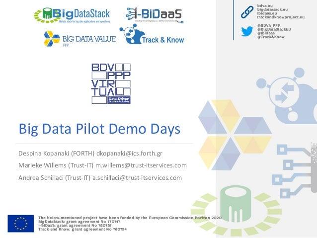 Big Data Pilot Demo Days Despina Kopanaki (FORTH) dkopanaki@ics.forth.gr Marieke Willems (Trust-IT) m.willems@trust-itserv...