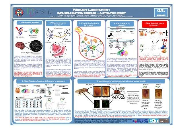 Wishart Laboratory : Infantile Batten Disease – A synaptic Study Maica Llavero Hurtado1, Tom Gillingwater1, Giusy Pennetta...