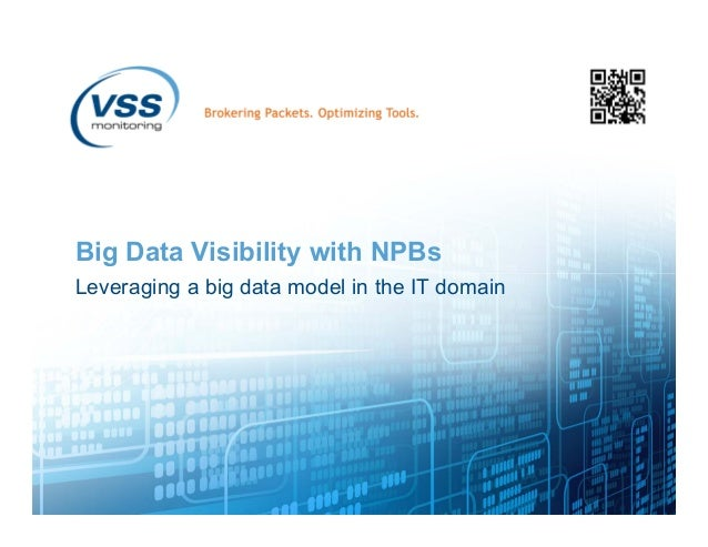 Big Data Visibility with NPBs Leveraging a big data model in the IT domain