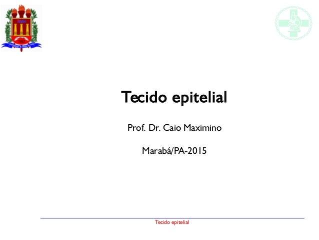 Tecido epitelial Tecido epitelial Prof. Dr. Caio Maximino Marabá/PA-2015
