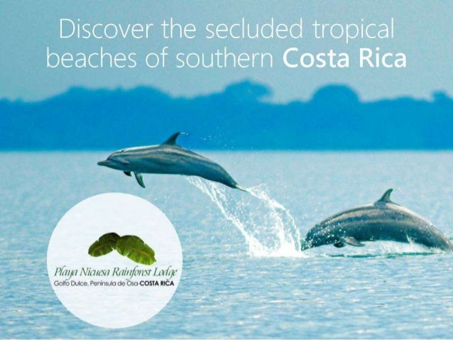 Secluded Tropical Beaches of Southern Costa Rica