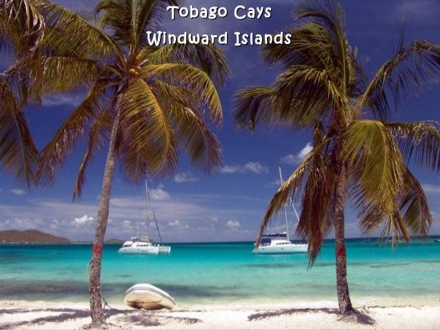 Tobago CaysTobago Cays Windward IslandsWindward Islands