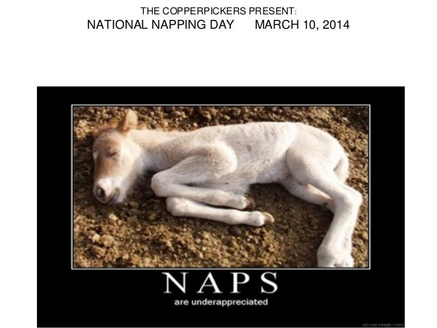 THE COPPERPICKERS PRESENT: NATIONAL NAPPING DAY MARCH 10, 2014
