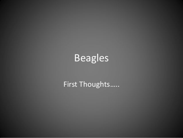 Beagles First Thoughts…..