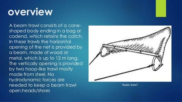 Beam Trawl Fisheries