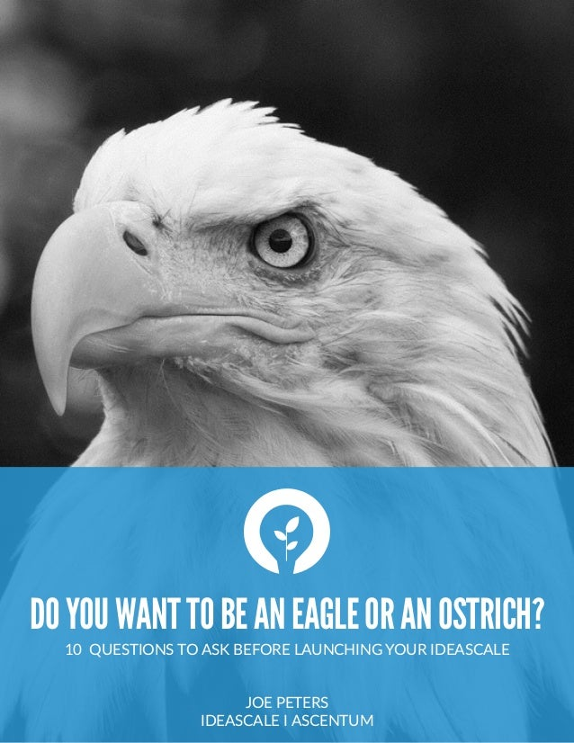 DOYOUWANTTOBEANEAGLEORANOSTRICH? 10    QUESTIONS  TO  ASK  BEFORE  LAUNCHING  YOUR  IDEASCALE   JOE  PETERS   IDEASCALE ...
