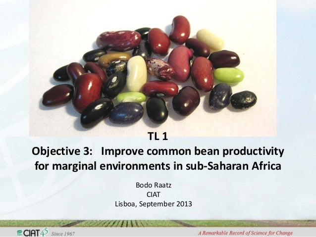 TL 1 Objective 3: Improve common bean productivity for marginal environments in sub-Saharan Africa Bodo Raatz CIAT Lisboa,...