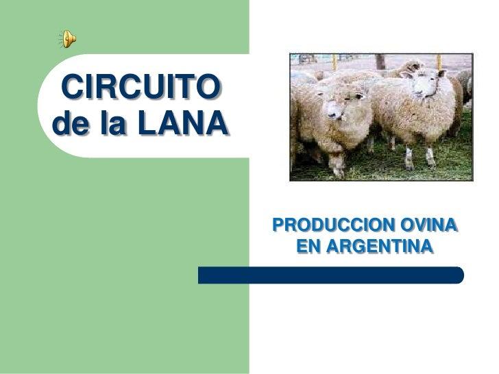 Circuito Yerbatero Argentina : Circuito de la lana argentina