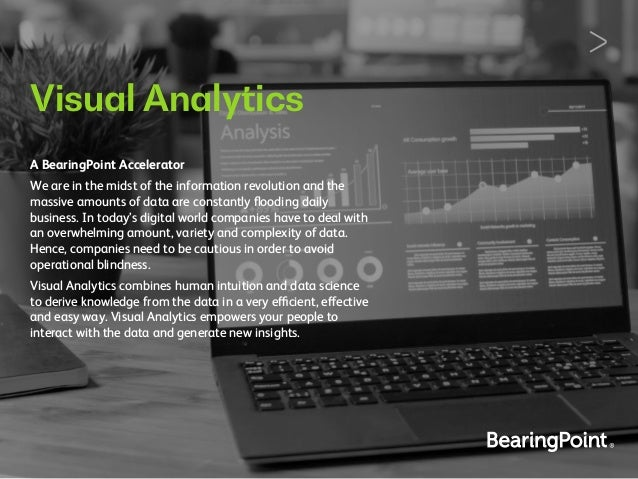 Visual Analytics A BearingPoint Accelerator We are in the midst of the information revolution and the massive amounts of d...