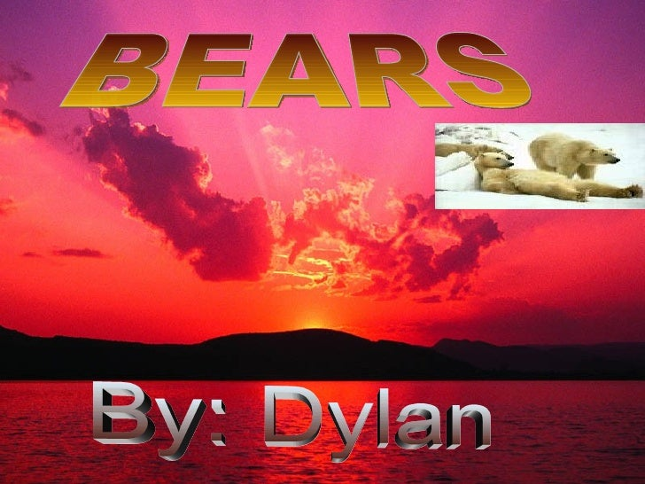 By: Dylan BEARS