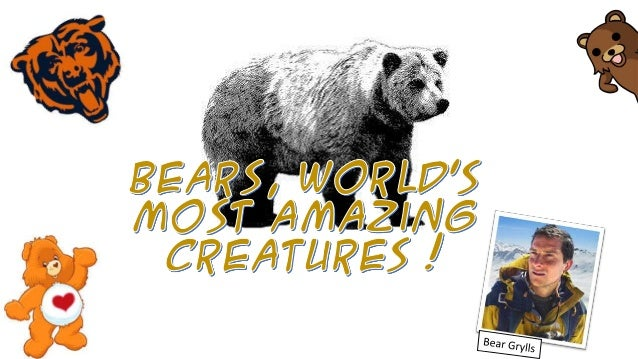 What are bears ?  Types of bear : 1. Asian black bear 2. American black bear 3. Spectactled bear 4. Brown bear 5. Asian su...