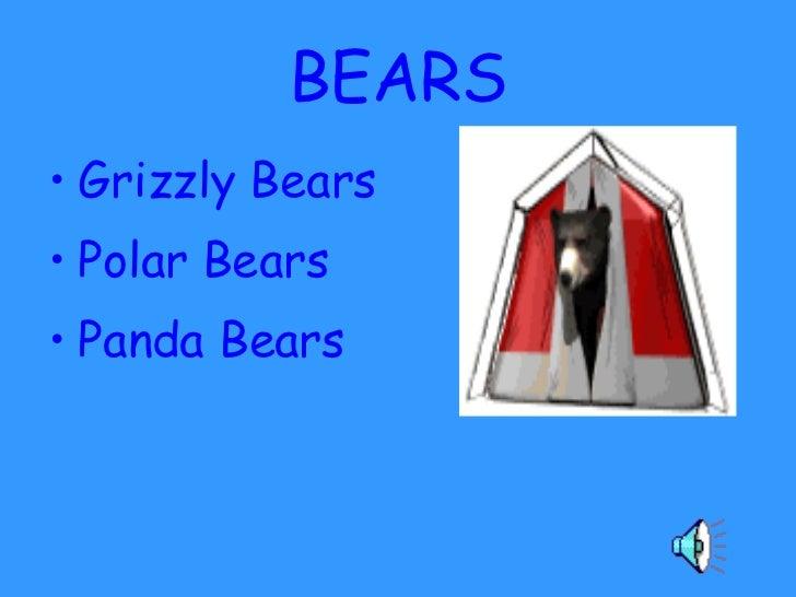 BEARS <ul><li>Grizzly Bears </li></ul><ul><li>Polar Bears </li></ul><ul><li>Panda Bears </li></ul>