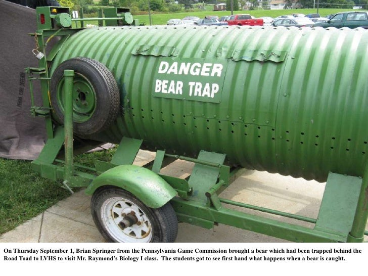 On Thursday September 1, Brian Springer from the Pennsylvania Game Commission brought a bear which had been trapped behind...