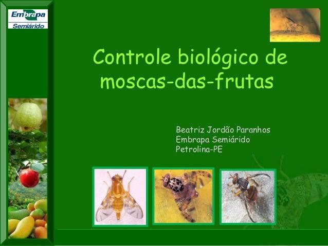 """XI SICONBIOL 2009, """"Controle biológico de pragas de fruteiras tropicais""""  XXII CONGRESSO BRASILEIRO DE FRUTICULTURA  Bento..."""