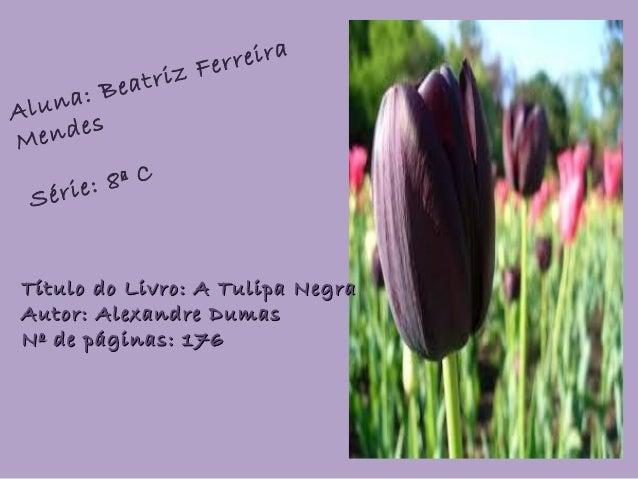 Aluna: Beatriz Ferreira Mendes Série: 8ª C Título do Livro: A Tulipa NegraTítulo do Livro: A Tulipa Negra Autor: Alexandre...