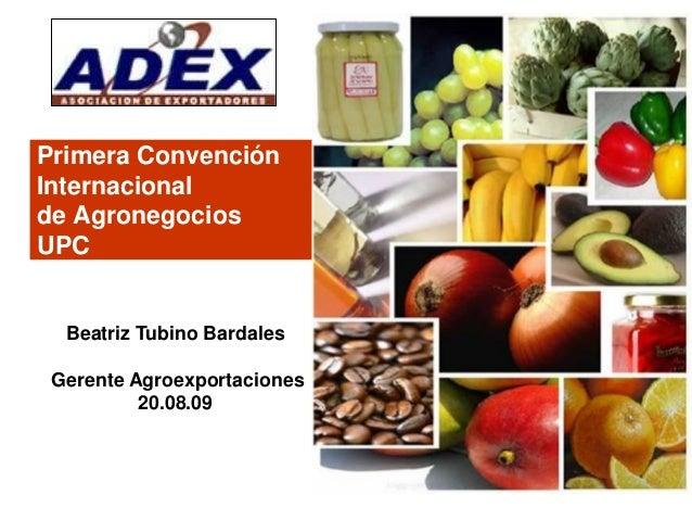 Primera Convención Internacional de Agronegocios UPC Beatriz Tubino Bardales Gerente Agroexportaciones 20.08.09