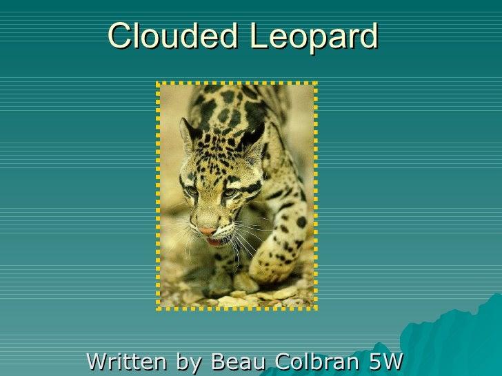 Clouded Leopard Written by Beau Colbran 5W