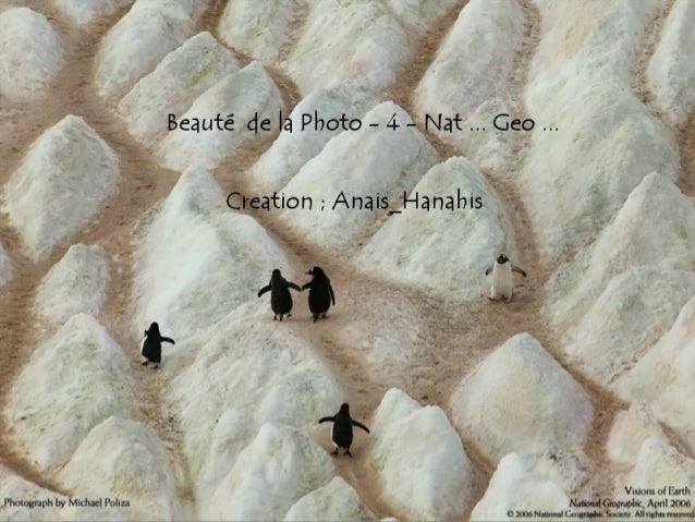 Beauté de la photo   4 - nat ... geo ...  by Anais-Hanahis