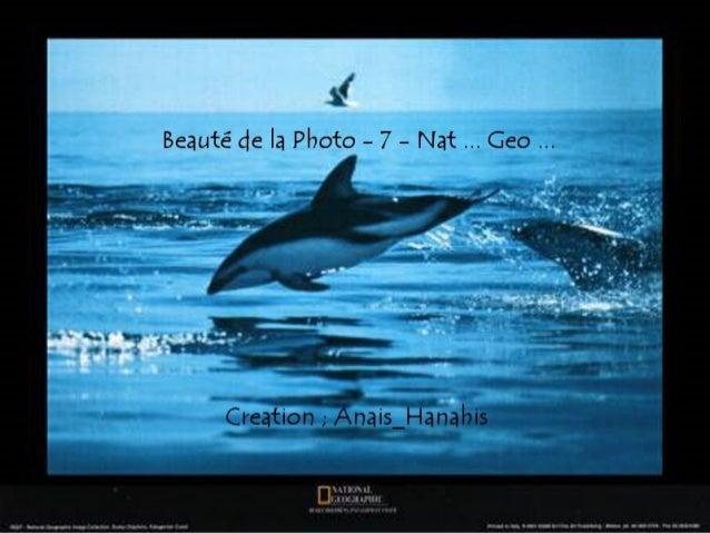 Beauté de la photo   7 - nat ... geo ...  by Anais_Hanahis
