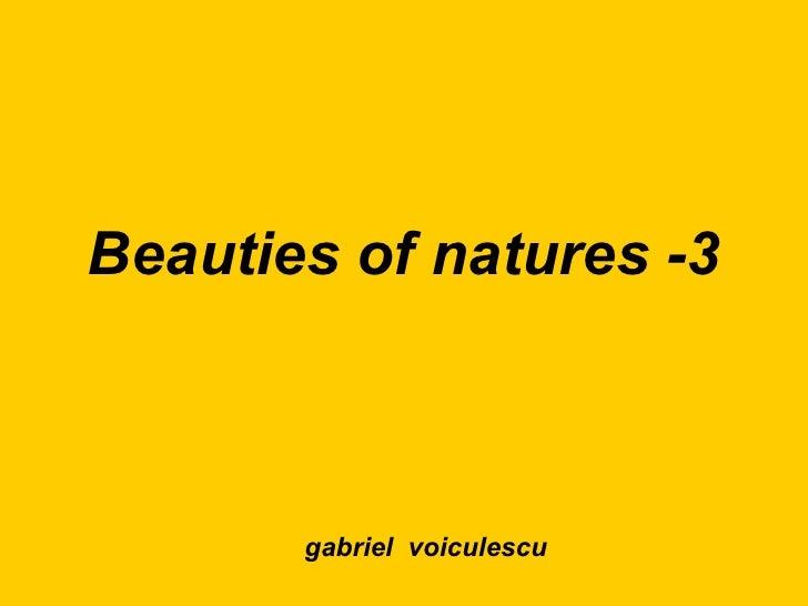 Beauties of natures -3 gabriel  voiculescu