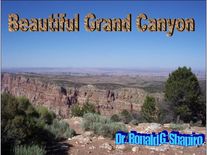 Dr. Ronald. G. Shapiro  November 30, 2008 Beautiful Grand Canyon Dr. Ronald G. Shapiro