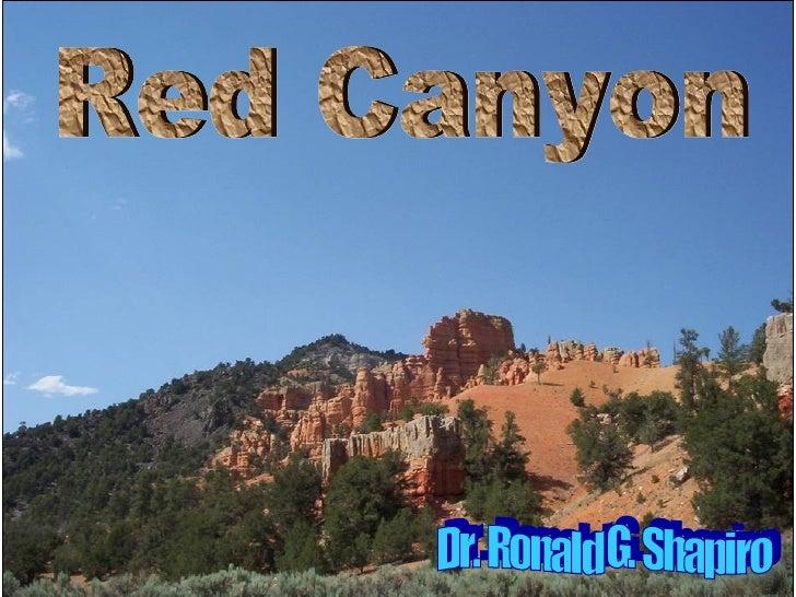 Dr. Ronald G. Shapiro  November 30, 2008 Red Canyon Dr. Ronald G. Shapiro