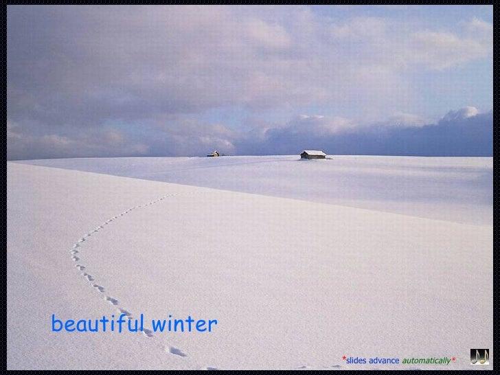 beautiful winter   * slides advance   automatically *