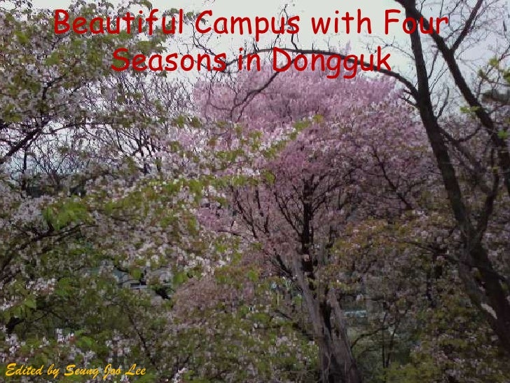 Beautiful Campus with Four Seasons in Dongguk<br />Edited by SeungJoo Lee<br />