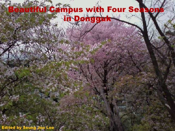 Beautiful Campus with Four Seasonsin Dongguk<br />Edited by SeungJoo Lee<br />
