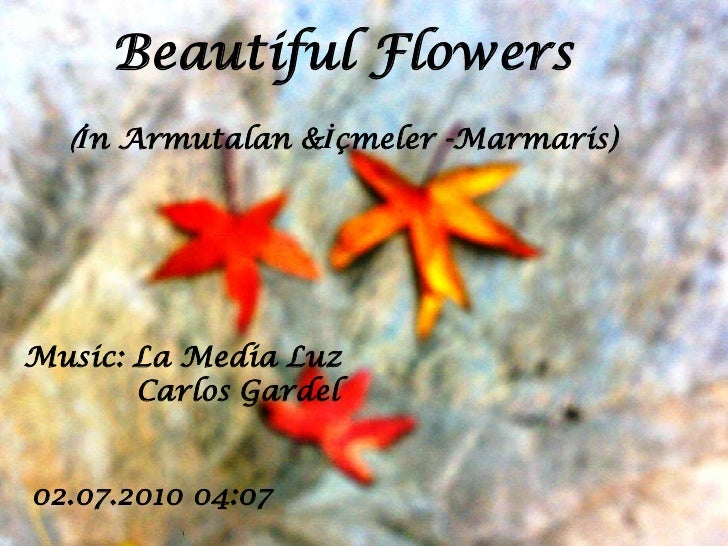Beautiful Flowers<br />(İn Armutalan &İçmeler -Marmaris)<br />Music: La MediaLuz<br />13.07.2010 17:11<br />
