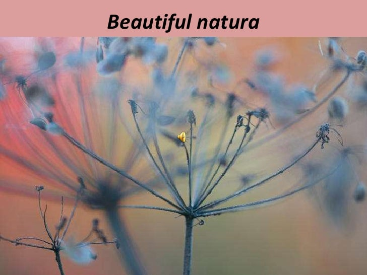 Beautiful natura<br />