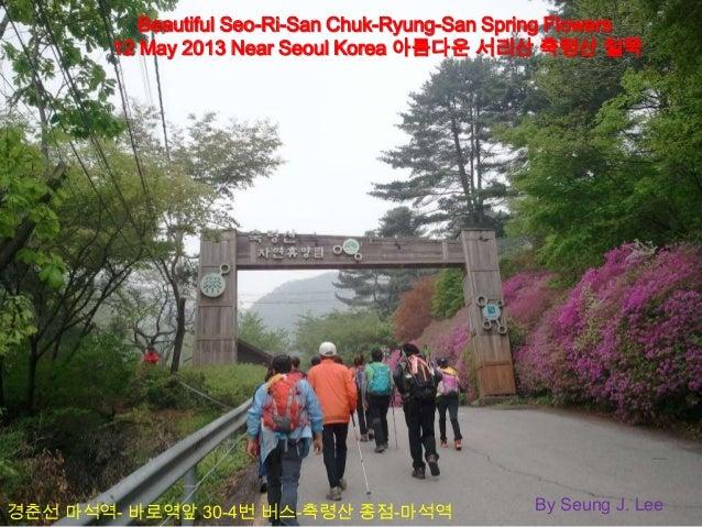 Beautiful Seo-Ri-San Chuk-Ryung-San Spring Flowers12 May 2013 Near Seoul Korea 아름다운 서리산 축령산 철쭉By Seung J. Lee경춘선 마석역- 바로역앞...