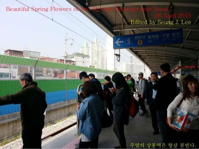 Beautiful Spring Flowers of Seo-Ri-San Mountain near Seoul 26 April 2015 Edited by Seung J. Lee 주말의 상봉역은 항상 붐빈다.