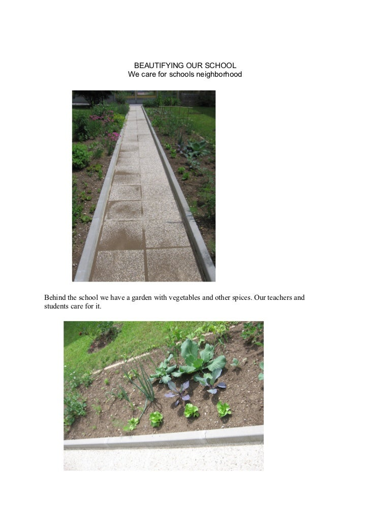 BEAUTIFYING OUR SCHOOL                           We care for schools neighborhoodBehind the school we have a garden with v...