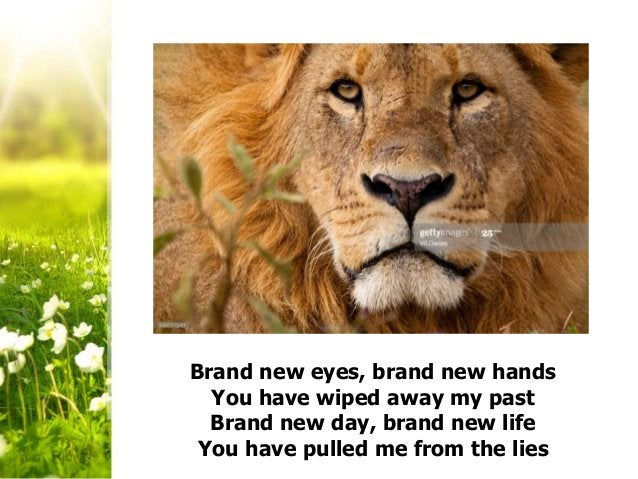 Brand new eyes, brand new hands You have wiped away my past Brand new day, brand new life You have pulled me from the lies