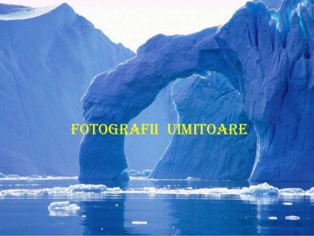 FOTOGRAFII UIMITOARE