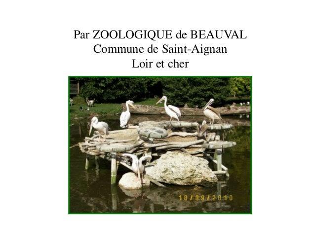 Par ZOOLOGIQUE de BEAUVAL  Commune de Saint-Aignan  Loir et cher