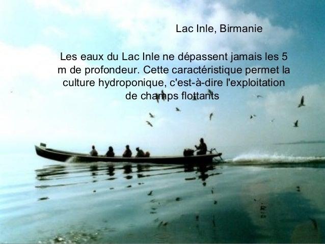Lac Inle, BirmanieLes eaux du Lac Inle ne dépassent jamais les 5m de profondeur. Cette caractéristique permet la culture h...