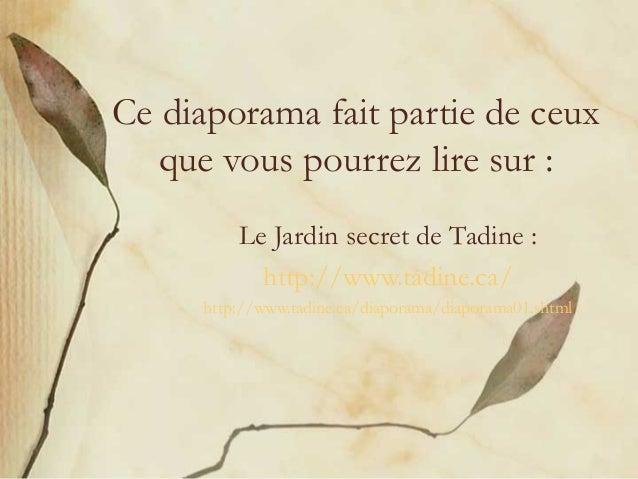 Ce diaporama fait partie de ceux   que vous pourrez lire sur :          Le Jardin secret de Tadine :            http://www...