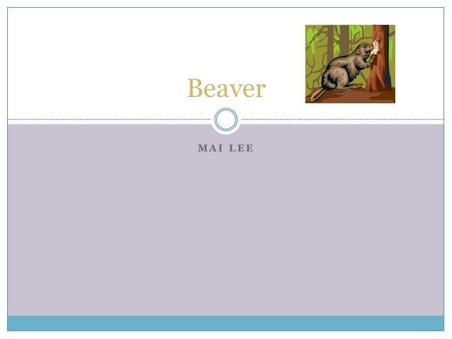 M A I L E E Beaver
