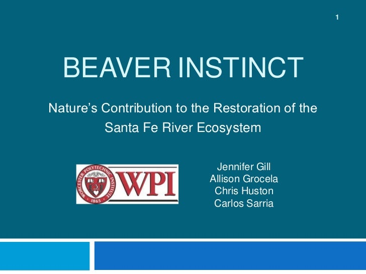 BeaverInstinct<br />Nature's Contribution to the Restoration of the <br />Santa Fe River Ecosystem<br />Jennifer Gill<br /...