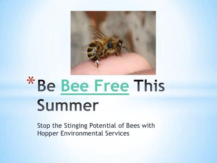 *          Bee Free    Stop the Stinging Potential of Bees with    Hopper Environmental Services