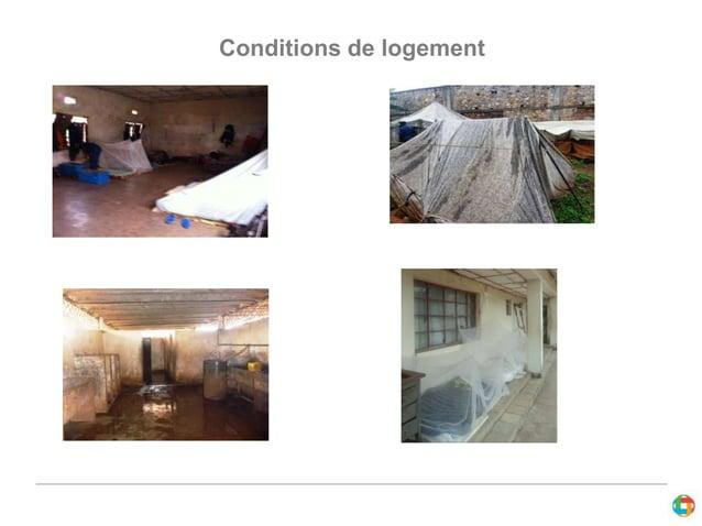 Conditions de logement