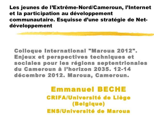 Les jeunes de l'Extrême-Nord/Cameroun, l'Internetet la participation au développementcommunautaire. Esquisse d'une stratég...