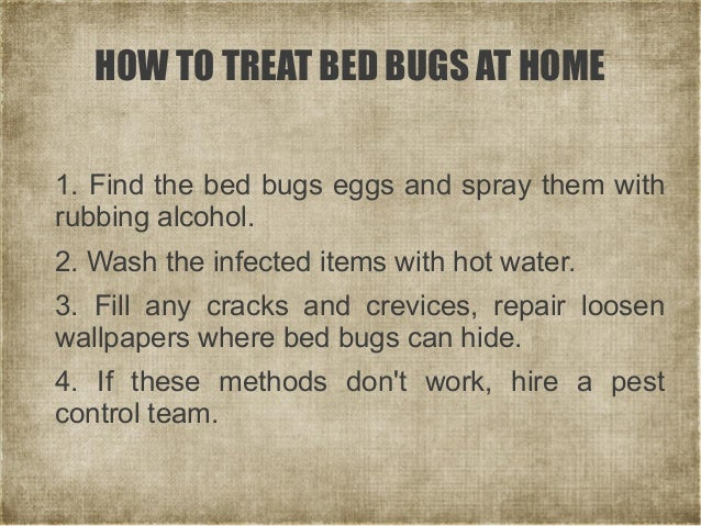 Rubbing Alcohol Spray For Bed Bugs