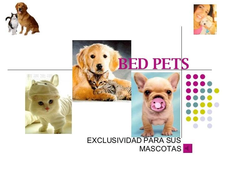 BED PETS EXCLUSIVIDAD PARA SUS MASCOTAS