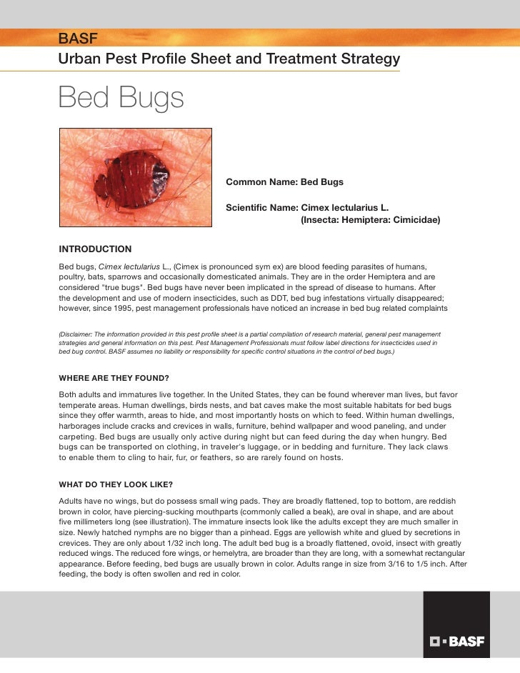 BASF Urban Pest Profile Sheet and Treatment Strategy  Bed Bugs                                                            ...